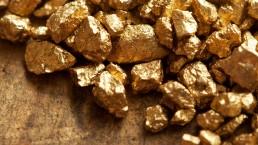 A pile of gold nuggets lay on a table.